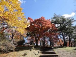 上ノ山公園2014.11.3-1